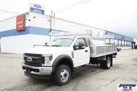 New 2018 Ford Super Duty F-450 DRW XL